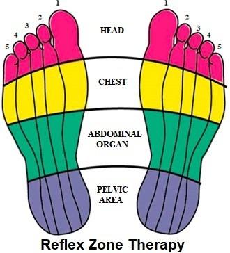 فوائد مساج القدمين - خريطة باطن القدم