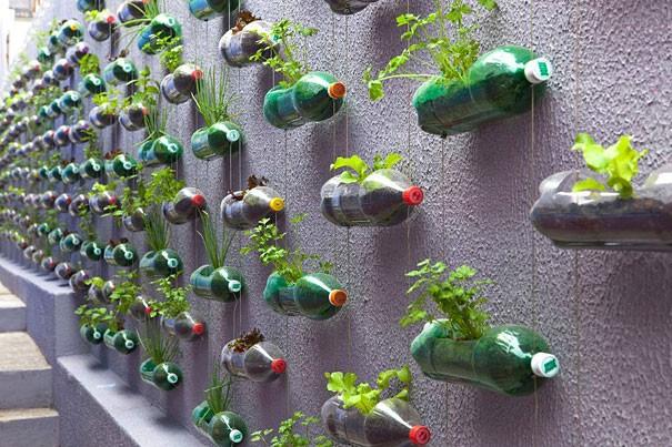 7 أفكار بسيطة لإعادة استخدام الزجاجات الفارغة-الزراعة
