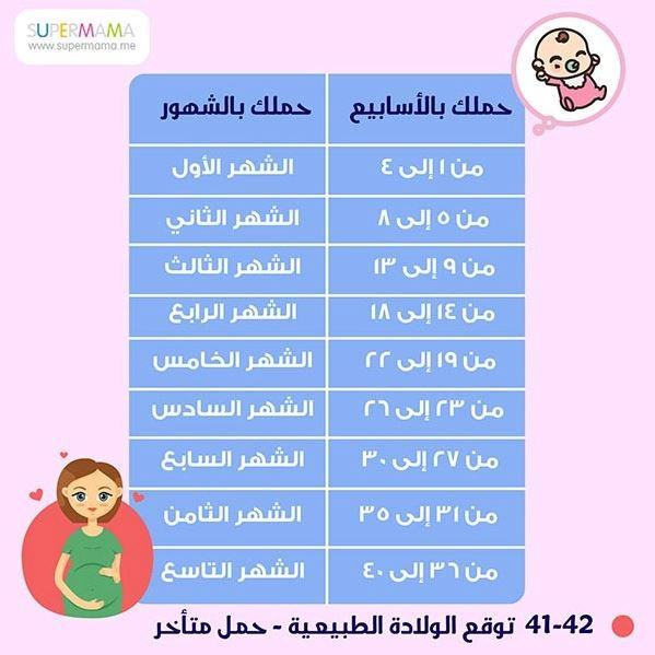 جدول الحمل بالأسابيع - الحمل بالأسابيع والشهور
