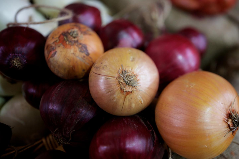 أنواع البصل - بصل متنوع