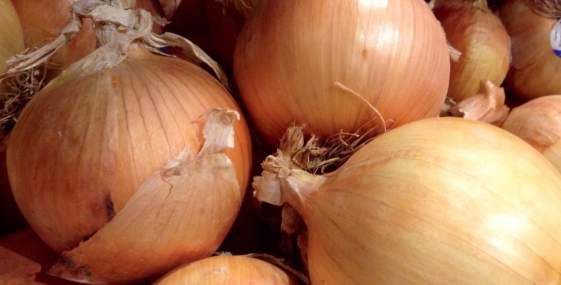 أنواع البصل - البصل الحلو