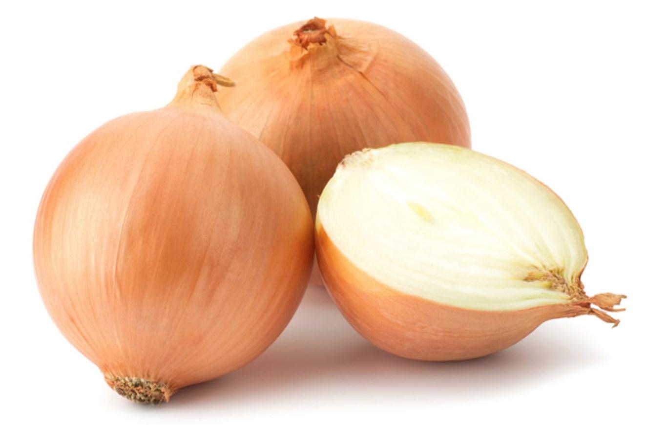 أنواع البصل - البصل الإسباني