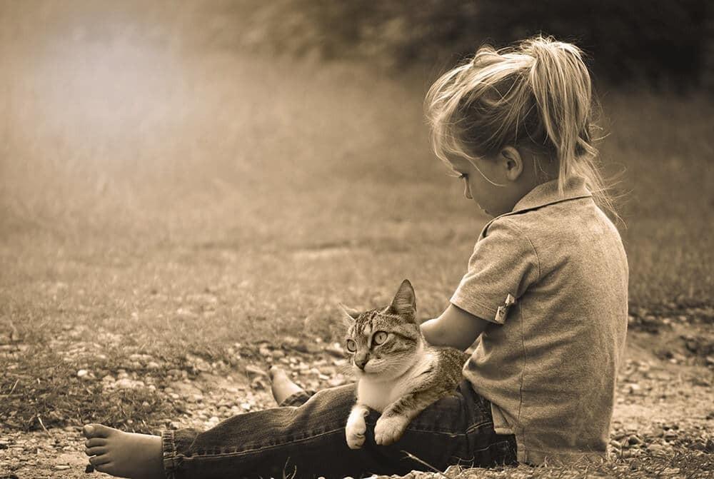 أفكار لتصوير الأطفال في المنزل - طفلة مع قطتها