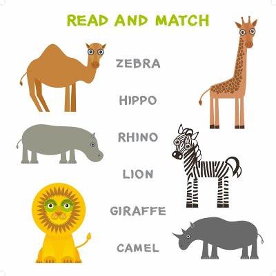 ألعاب تنمية المهارات العقلية للأطفال - لعبة توصيل الكلمات بالصور