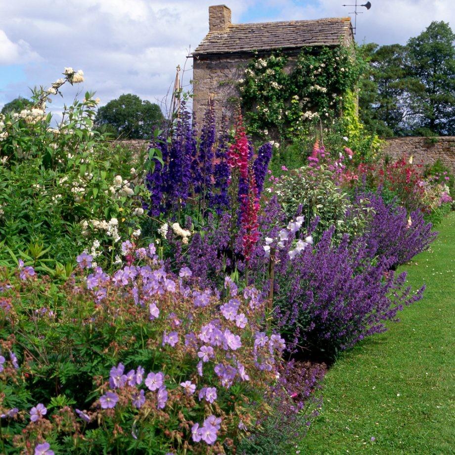 تصميم حديقة المنزل - زراعة النبتات