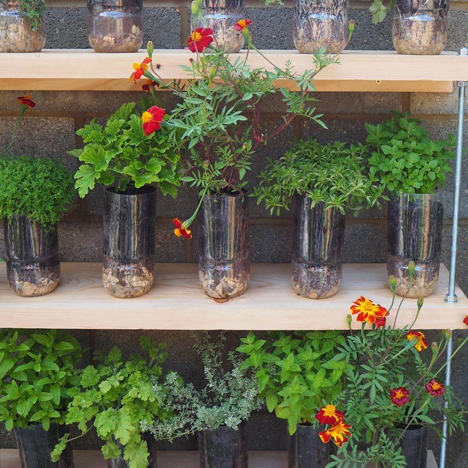 تصميم حديقة المنزل - الزجاجت البلاستيك