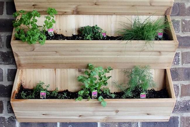 أفكار ديكور للحائط - رفوف للنباتات