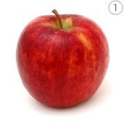 أنواع التفاح ـ الماكنتوش