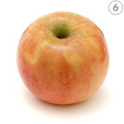 أنواع التفاح ـ الفوجي