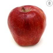 أنواع التفاح ـ التفاح الأحمر