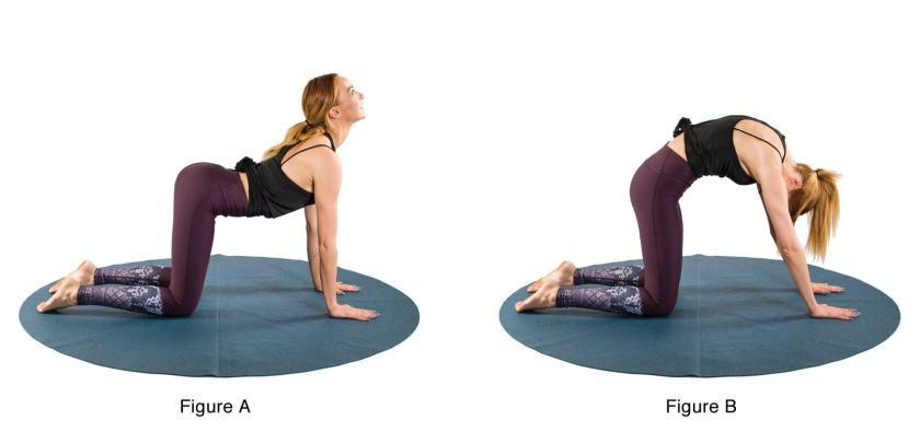 تمارين اليوجا في الثلث الأول من الحمل - التمرين الثاني